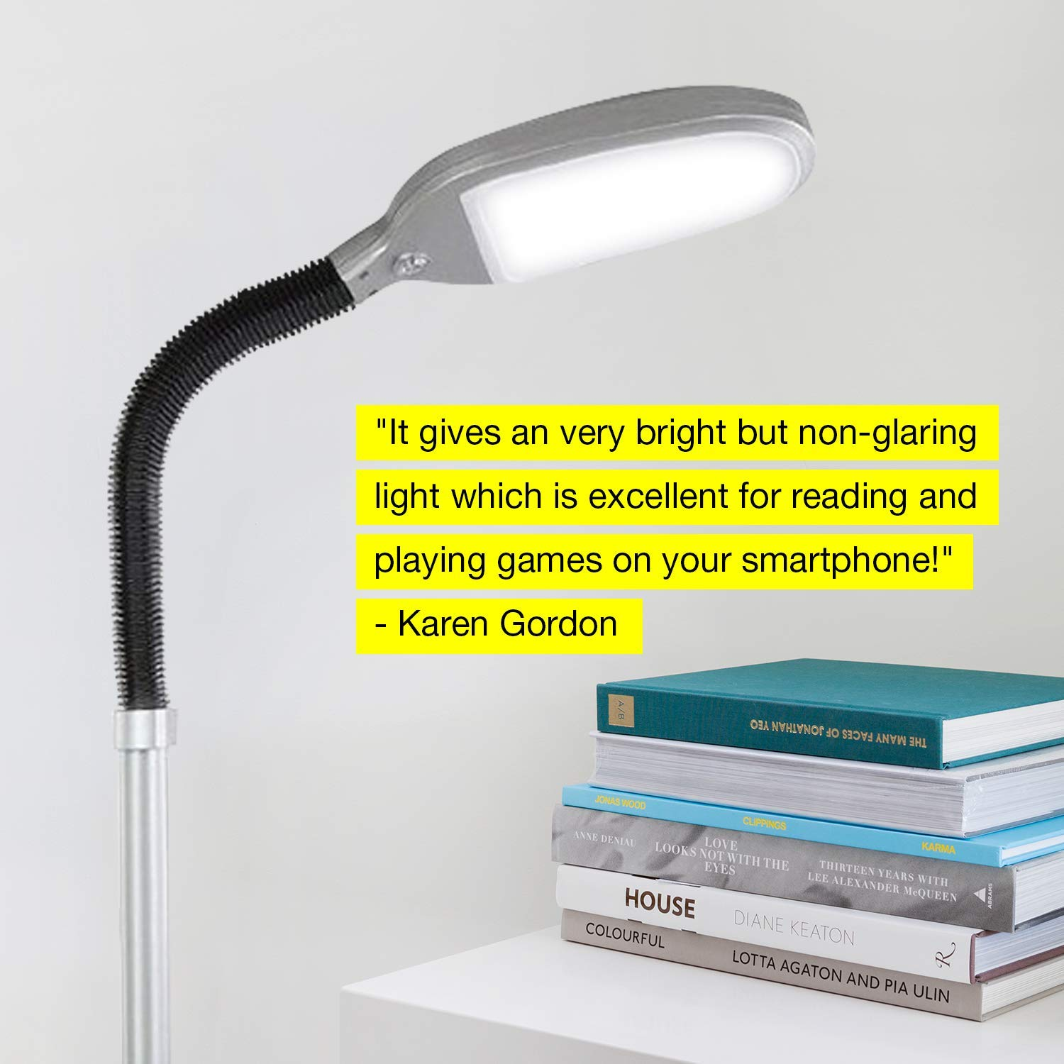 rightech Litespan LED Bright Reading and Craft Floor Lamp